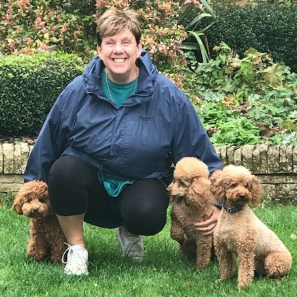 Search for Dog Trainers in England