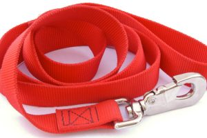 A photograph of a dog leash against a white background
